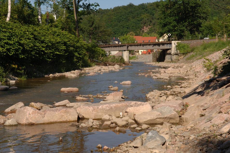 Das Wasser steht tief. Für die Wilde und Rote Weißeritz, die Müglitz und die Seidewitz gilt ein Wasser-Entnahme-Verbot.