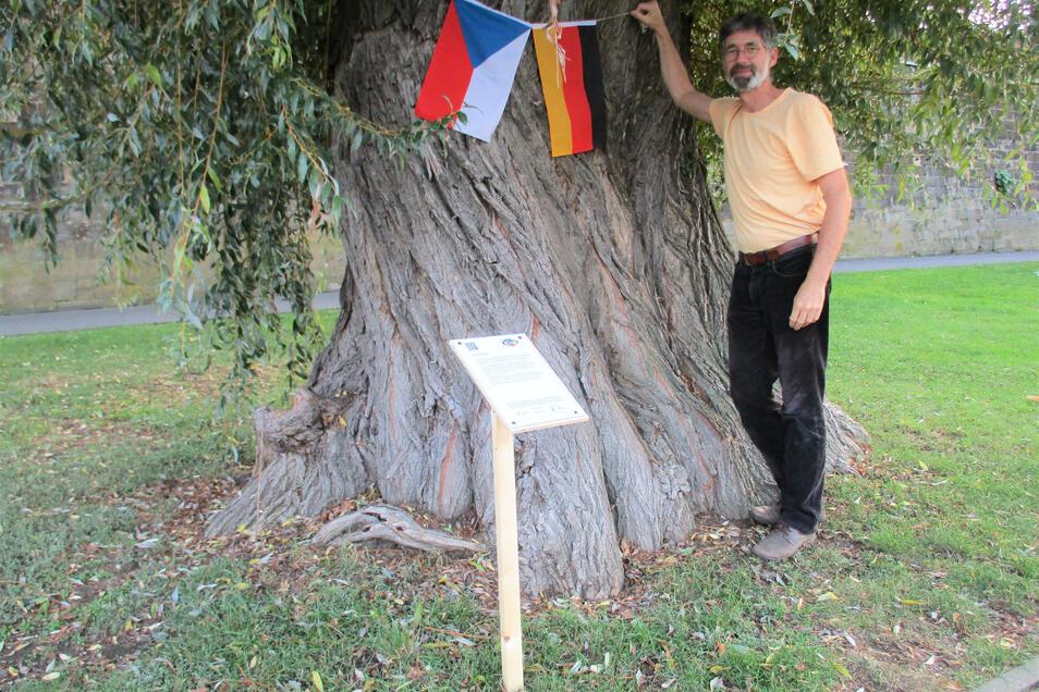 Bäume sind in vielen Kulturen verwurzelt. Helge Goldhahn zeigt es an ausgewählten Bäumen in Pirna.