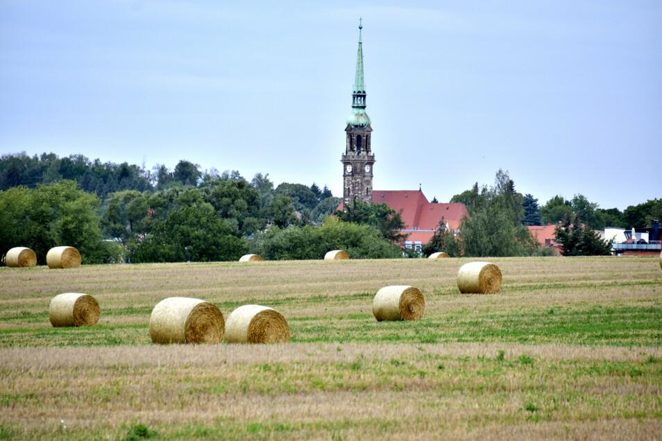 Ein abgeerntetes Feld bei Radeberg.