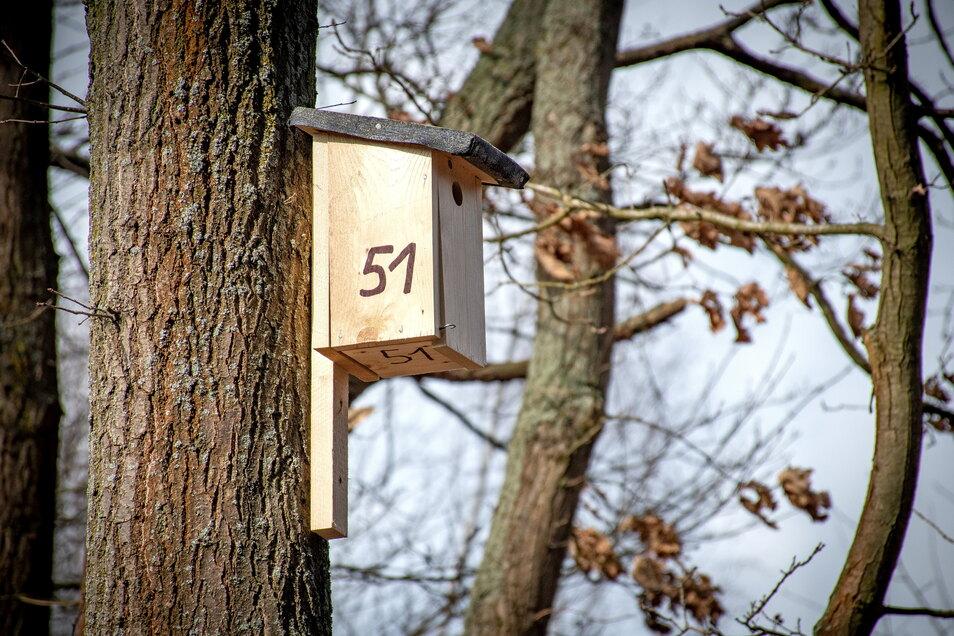 Seit dem Wochenende hängen Nistkästen an den Bäumen entlang der Straße zu Fischers Teich. Die Stadtverschönerer haben sie angebracht.