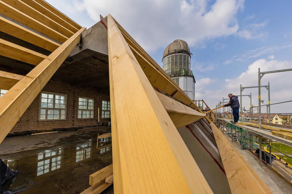 Bei der Erneuerung von 4.000 m2 Dachfläche auf dem Beyerbau verarbeitet der Bau Dresden Gruna 220 m3 Holz verschiedener Qualität. Der Auftrag ist mit rund einer Million Euro veranschlagt. Noch.