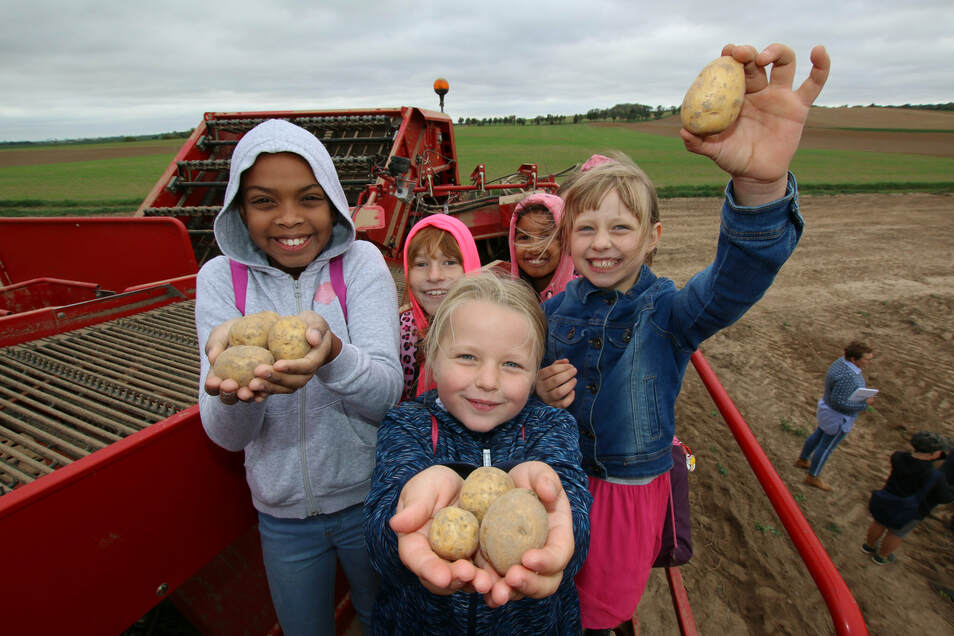 Auch die Mädchen sind von der Technik, die bei der Kartoffelernte zum Einsatz kommt, begeistert.