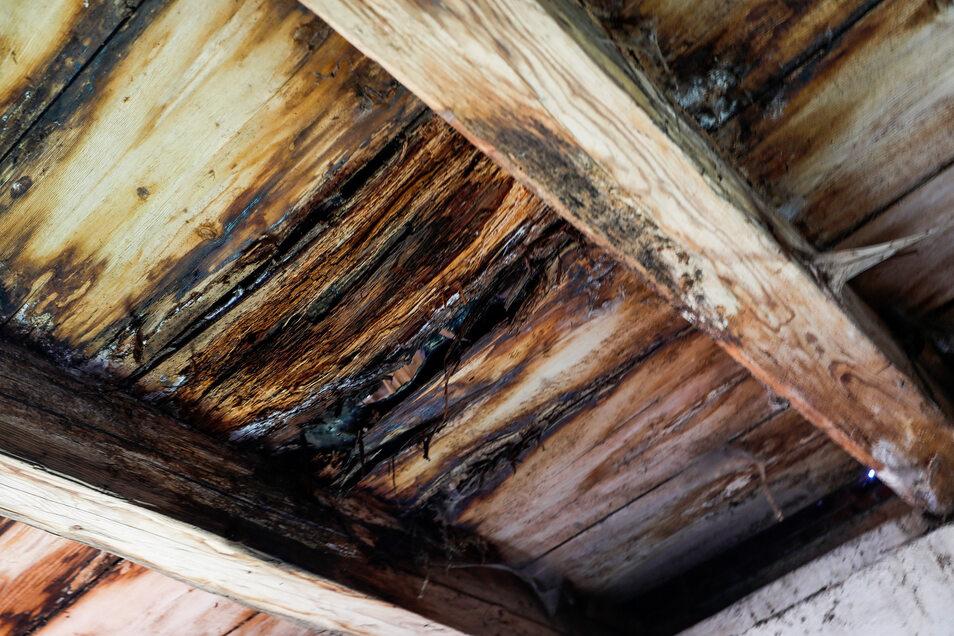 Eindringende Nässe - durch das marode Dach - ist eines der Hauptprobleme des denkmalgeschützten Gebäudes.