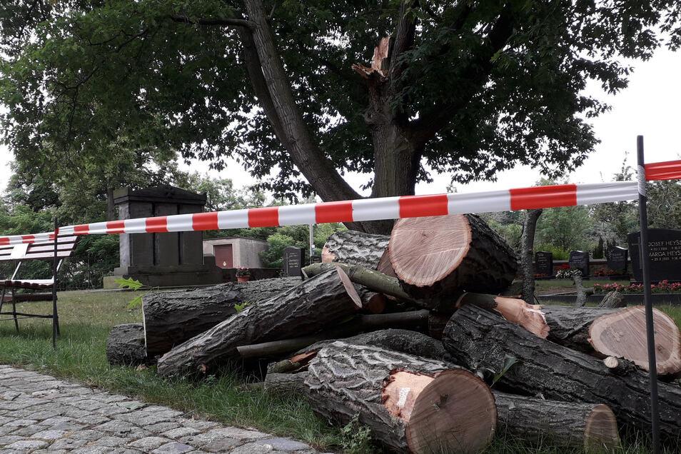 Ein Teil des unteren Friedhofs in Glaubitz ist abgesperrt. Dort waren Äste einer Eiche abgebrochen.