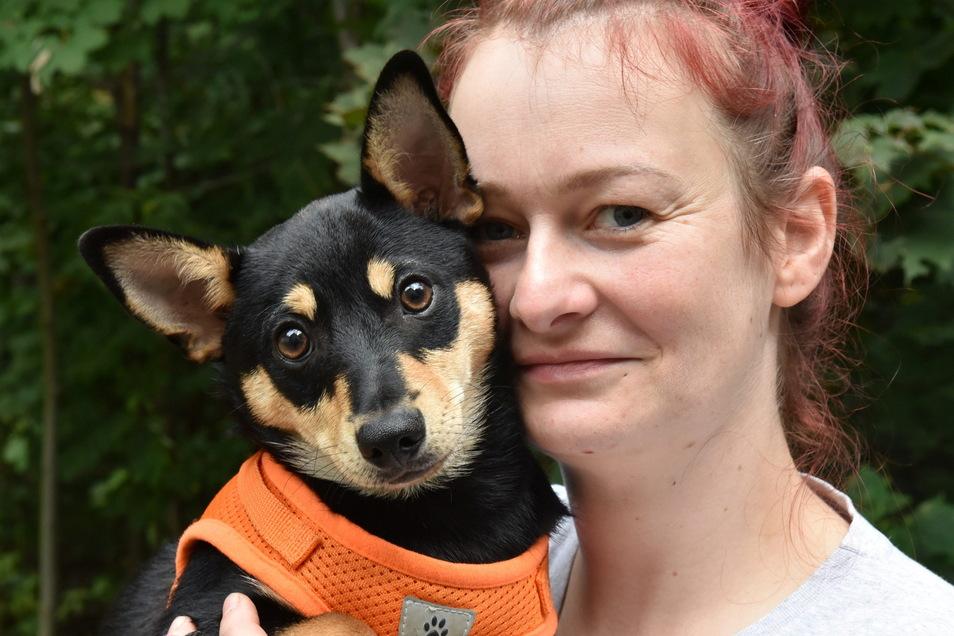Schmuggelwelpen versorgen ist zurzeit Alltag im Freitaler Tierheim. Auch Lumpi, hier mit Tierpflegerin Romy Rösner, sucht ein neues Zuhause.