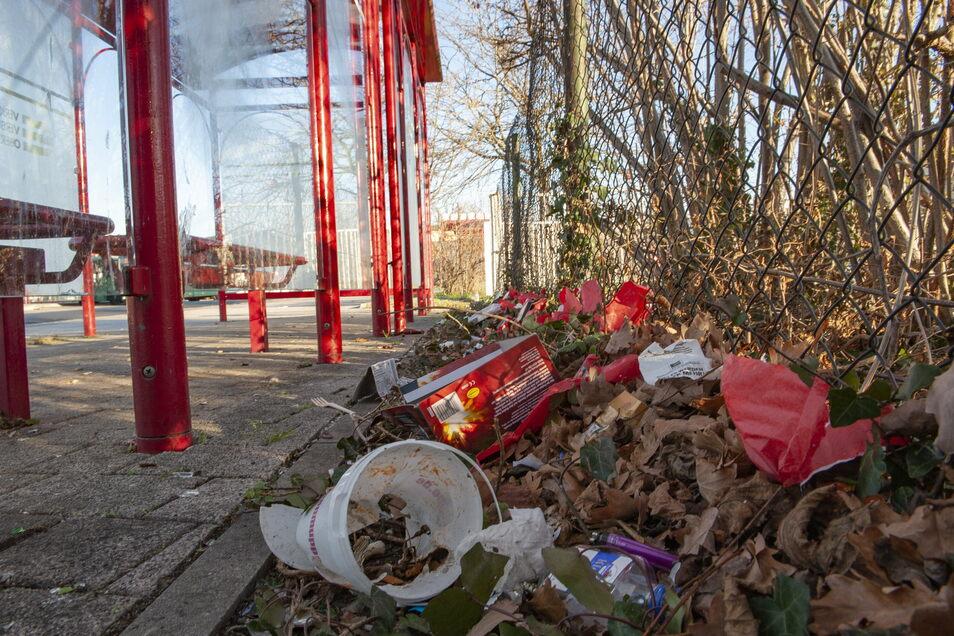 Nach der Silvesternacht 2019/20 glichen viele Stellen im Stadtgebiet einer Müllhalde. So wie hier an der Bushaltestelle Cottbuser Bahnhof.