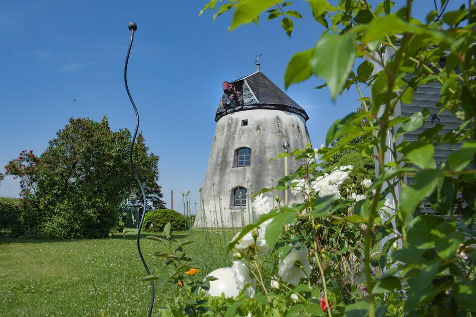 """In der Holländer-Windmühle Weßnitz gibt es eine Führung durch den Eigentümer und Flügelbauer, der Ortsverein """"Edelweiß"""" Weßnitz kümmert sich um die Versorgung der Gäste. Das Mahlwerk ist vollständig erhalten."""