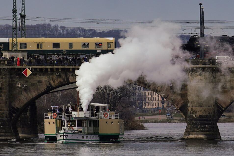 """Der Dampfer Pillnitz, hier bei einer Sonderfahrt ohne Fahrgäste im März 2021, soll einer von zwei """"Wasserbussen"""" werden."""