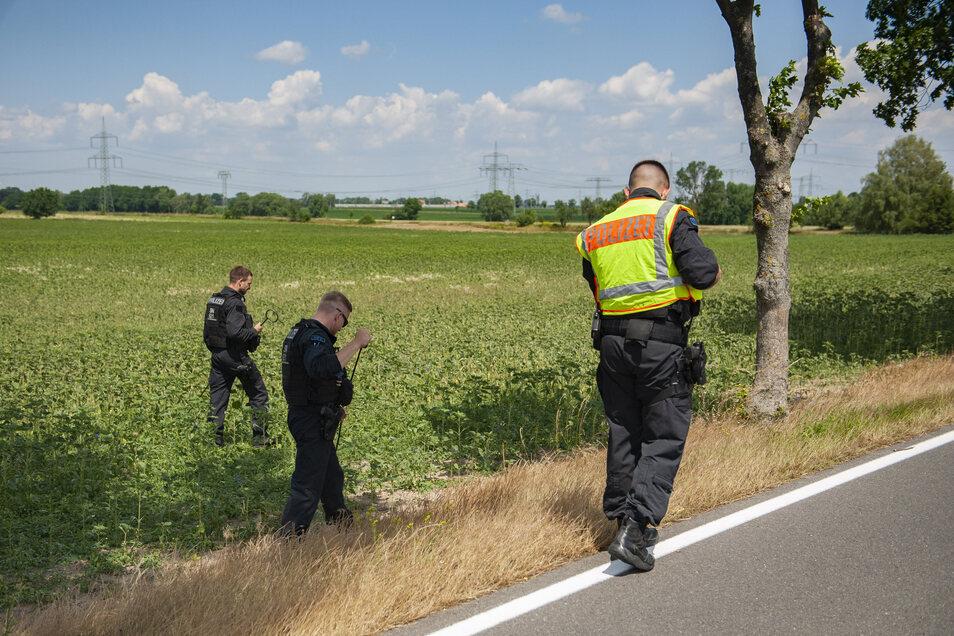 Zahlreiche Mitarbeiter der Polizei durchsuchten am Montagvormittag ein Wald- und Feldstück beidseitig der Straße zwischen Medessen und Zottewitz.