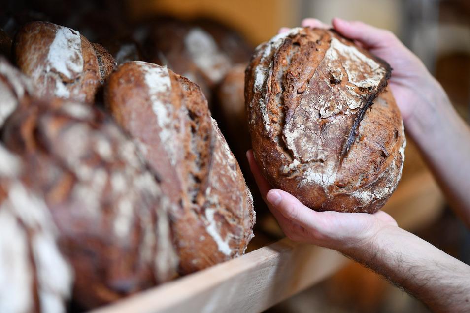 Wenngleich Schmierinfektionen mit dem Corona-Virus unwahrscheinlich sind, achten viele Kunden beim Bäcker derzeit verstärkt auf den Einsatz von Schutz-Handschuhen.