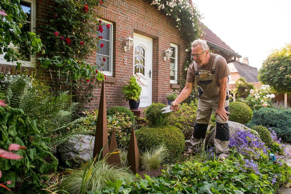Trotz wenig Platz kann vor Häusern eine grüne Oase entstehen - das hilft auch der Außenwirkung.