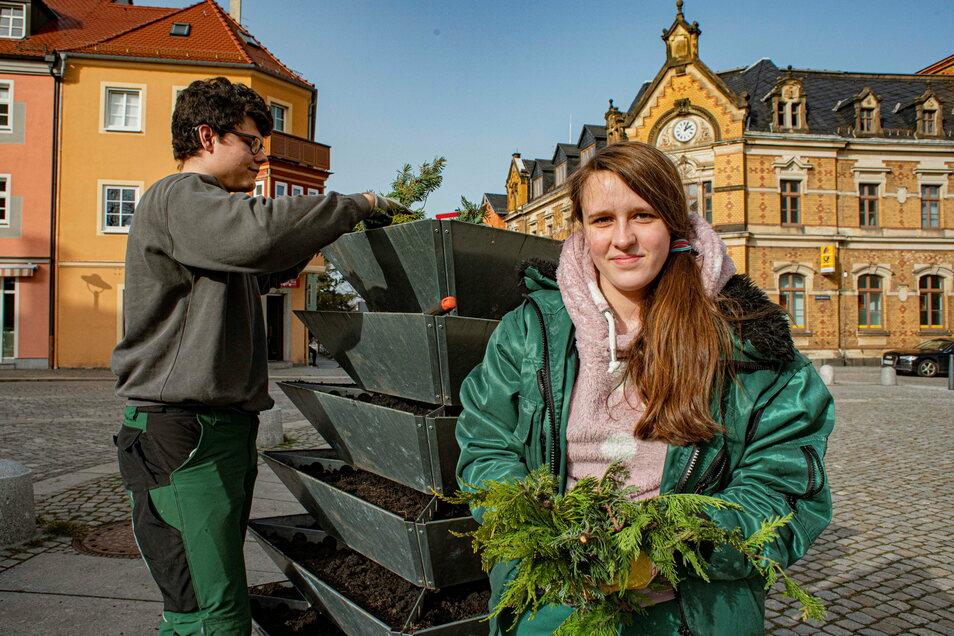 Die Stadtgärtnerei der Kamenzer Kommunalen Dienste putzt derzeit die Stadt für den Frühling. Die Azubis Aline Storch und Jonas Gessert bereiten hier die Schalen für die Pflanzung in der nächsten Woche vor.