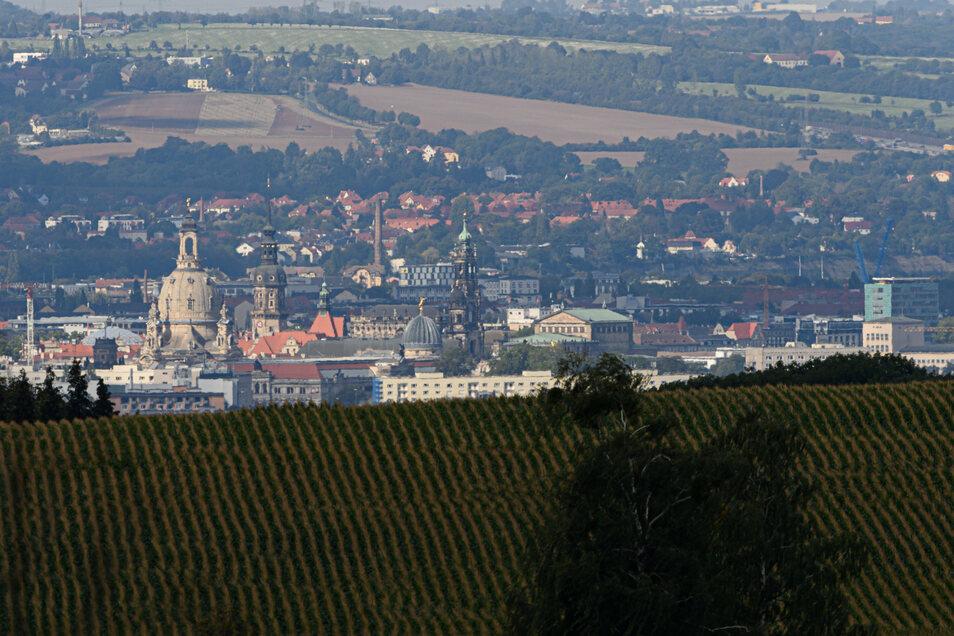 Blick über die Felder im Schönfelder Hochland auf die Dresdner Innenstadt