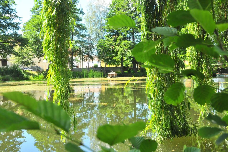 Idyllisch schon jetzt: Nun soll der Teich in Baselitz einen neuen Rundweg bekommen.