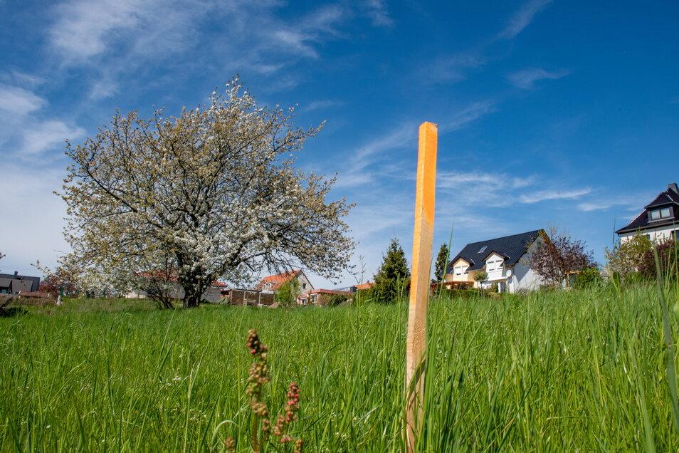 Am Eigenheimstandort Eichbergblick in Leisnig können zwölf Eigenheime entstehen. Die Stadträte haben die Pläne bestätigt. Die Vermessung des Grundstückes läuft.