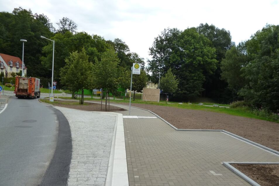 Die Freifläche am Kreisverkehr soll zu einer Blühwiese werden.
