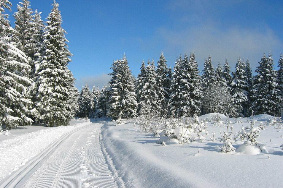 Auch der Winter im Thüringer Wald hat seinen besonderen Reiz.