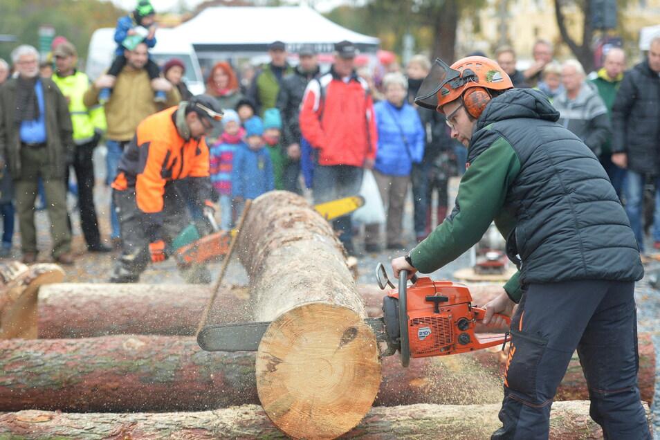 Großen Zuschauerandrang, wie sonst üblich beim Fisch- und Waldfest, wollen die Veranstalter vermeiden.