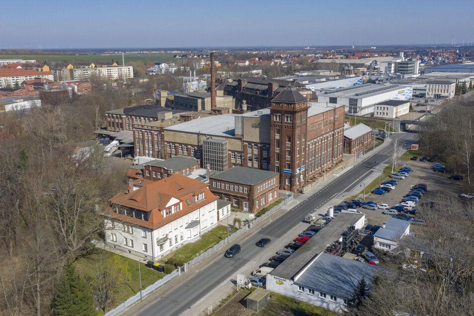 Ein Blick in die Riesaer Paul-Greifzu-Straße: Im markanten hellen Gebäude im Vordergrund ist die Euro-Akademie untergebracht, direkt dahinter liegt das Seifenwerk.