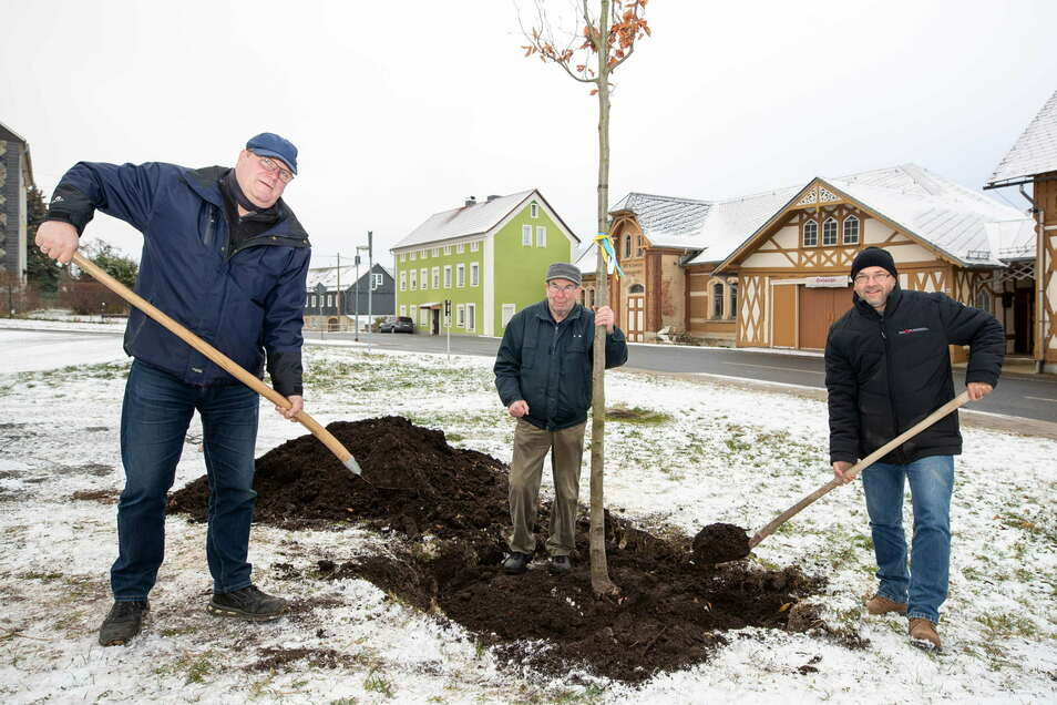 Gegenüber der Hofmühle haben Bauhofleiter Jörk Wolf (l-r); Dieter Mutscher und Falk Köhler vom Förderverein eine Blutbuche gepflanzt.