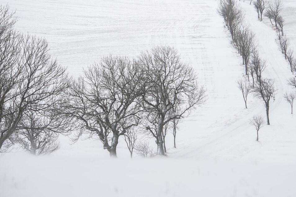 Die Straße von Löwenhain nach Fürstenau im Erzgebirge ist mit Schnee zugeweht.