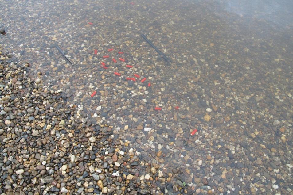 Auch rote Patronen wurden in der Elbe gefunden.