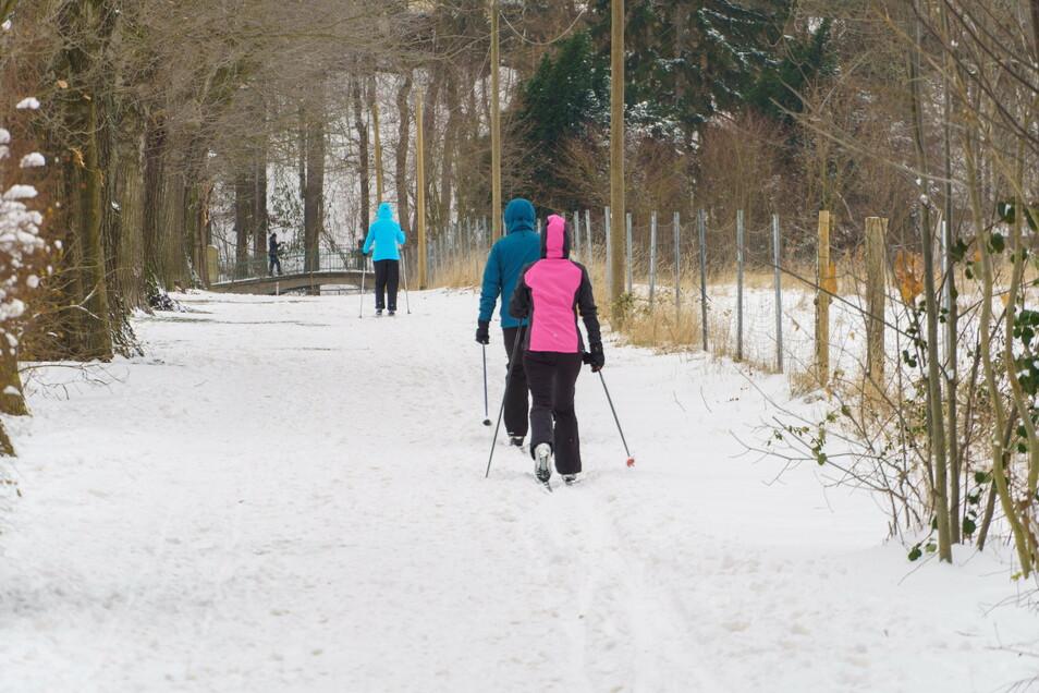 Nicht alltäglich: Im Riesaer Stadtpark liegt genug Schnee, um dort Langlauf-Ski zu fahren.