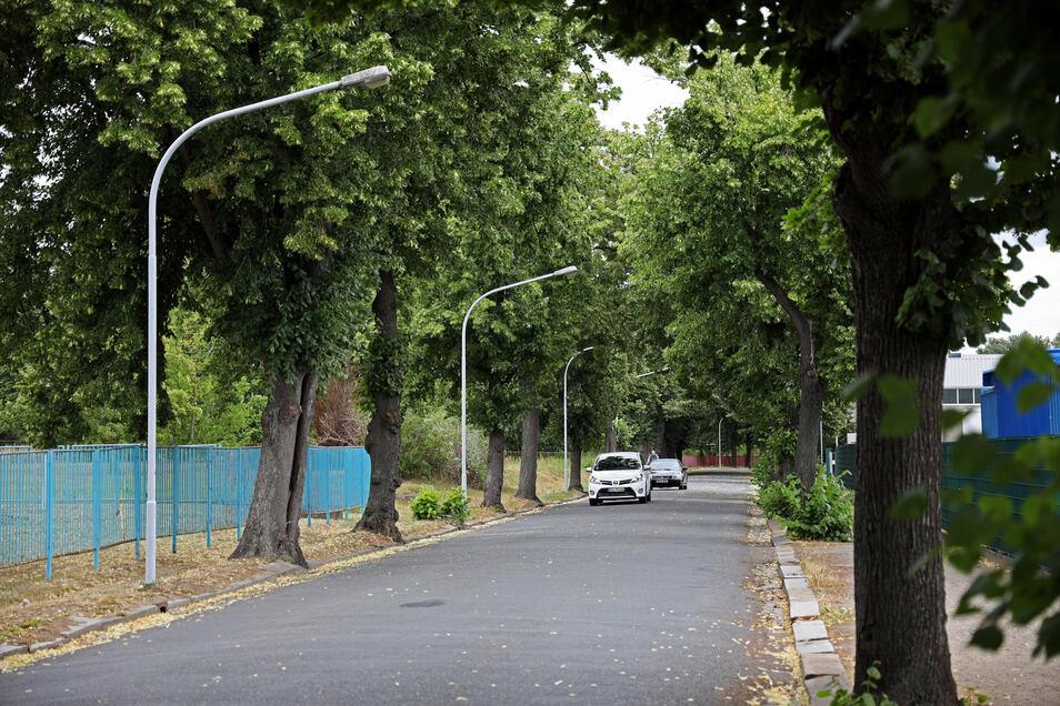 Die Beleuchtung entlang der Merzdorfer Straße in Riesa stammt teils noch aus den 50er-Jahren.