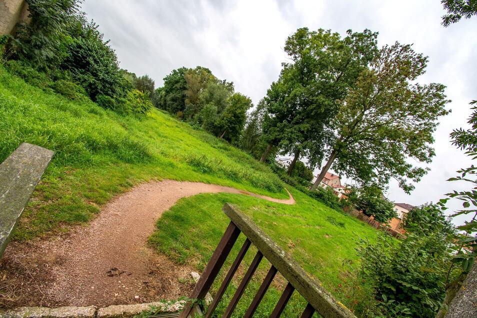Noch ist es nur eine Grünfläche, über die der Jahnatalweg führt. Doch bis zum nächsten Jahr soll hier ein naturnaher Rastplatz für Radfahrer und Wanderer entstehen.