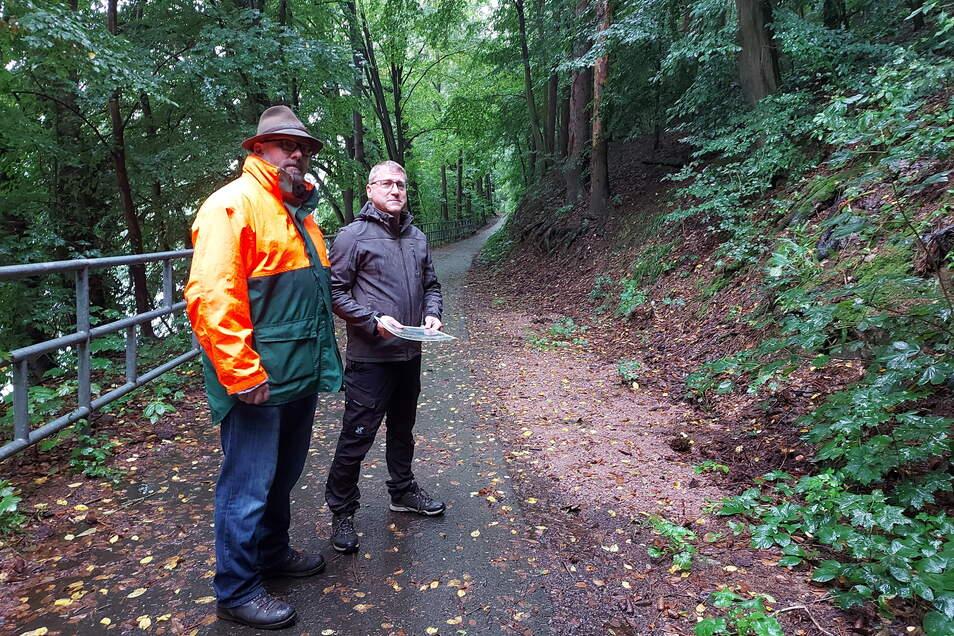 Mike Woletz (links) und Silvio Seydel von der Forstbetriebsgemeinschaft Erzgebirge-Chemnitzer Land begutachten die schadhaften Fichten am Rauschenthaler Weg.