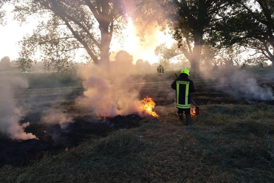 Kameraden der Zeithainer Gemeindefeuerwehr löschen am Dienstag einen Wiesenbrand bei Bobersen nahe der Elbe.