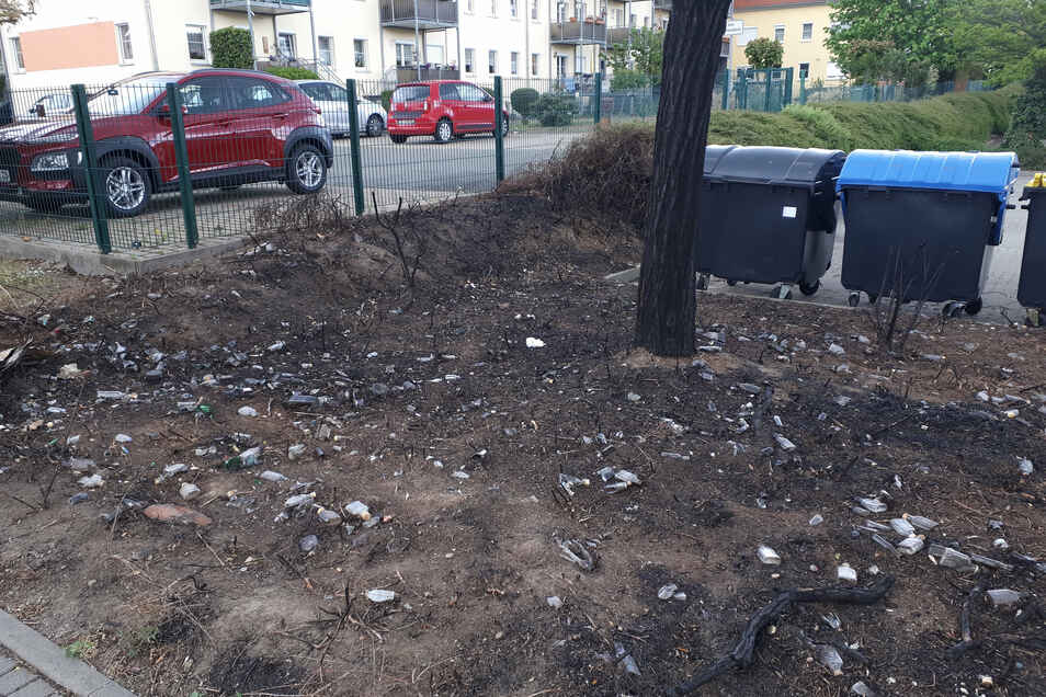 Kein schöner Anblick: Die abgebrannte Fläche an der August-Bebel-Straße in Riesa.