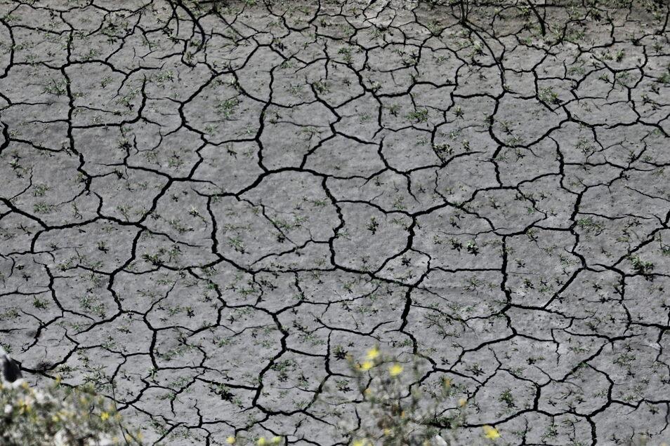 Ein Blick auf das ausgetrocknete und rissige Wasserbett des von der Dürre betroffenen San-Gabriel-Stausees in der Nähe von Azusa, Los Angeles County. Kalifornien ist auch in diesem Jahr von einer schweren Dürre betroffen