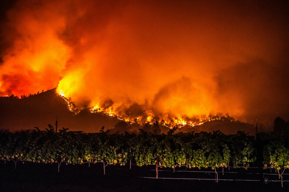 """Von den bewaldeten Hügeln in der Nähe von Calistoga nahe von Weinreben schlagen Flammen des """"Glass""""-Feuers empor."""
