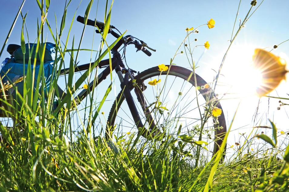Radeln in der Pfalz: Die Route erzählt von der Blüte des bäuerlichen Lebens in vergangenen Jahrhunderten.