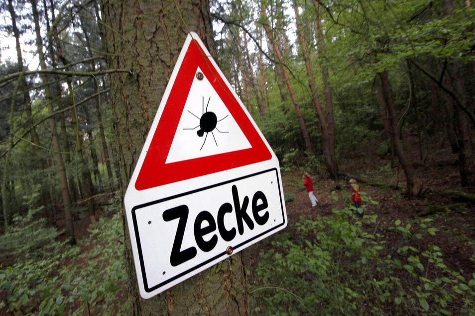 """Warnschilder mit der Aufschrift """"Zecke"""" sah man bisher nur in der warmen Jahreszeit. Gut möglich, dass man diese Hinweisschilder in der Region künftig auch im Winter aufstellen muss."""