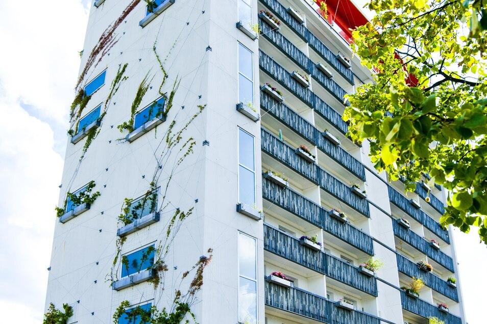"""Im """"Lausitz-Tower"""" ist eine Wohnung frei."""