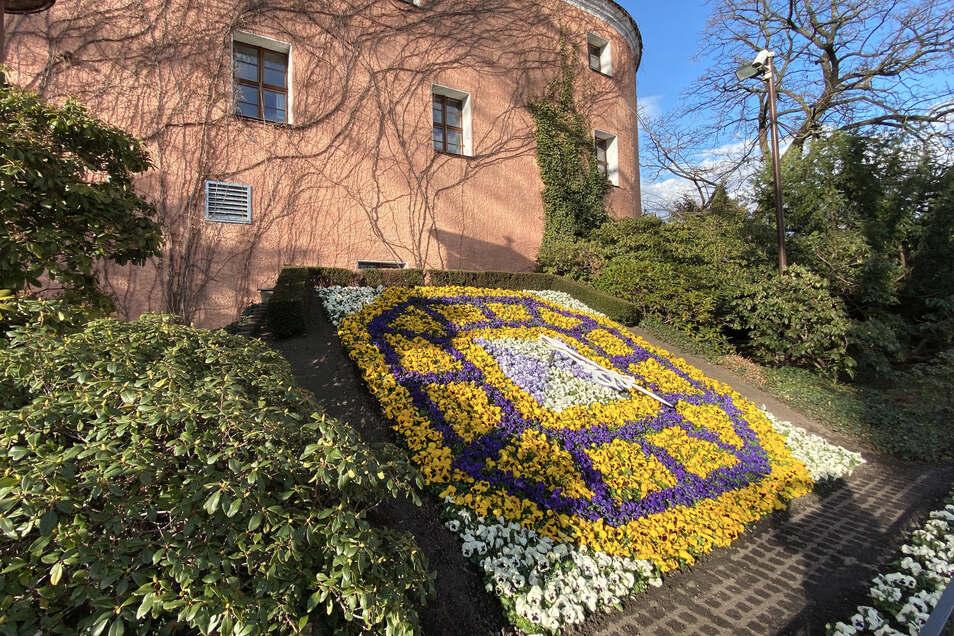 Die Blumenuhr in Zittau: Seit Monaten Anlaufpunkt für Kritiker der Corona-Maßnahmen