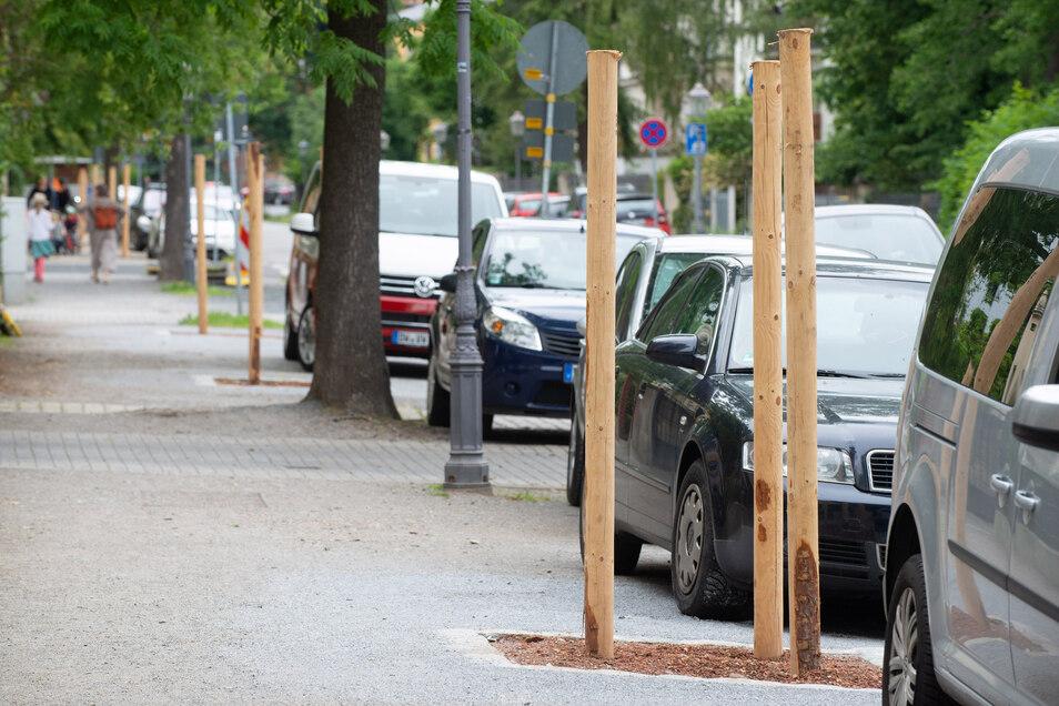 Die Stützpfähle kündigen an der Niederwaldstraße das neue Grün für den Stadtteil an. Die Bäume werden im Herbst allerdings erst einmal rot leuchten.