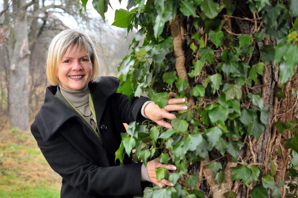 Silvia Kunas, die Kämmerin der Gemeinde Klipphausen, freut sich über Investitionen von rund 31 Millionen Euro in diesem Jahr, die unter anderem in den Bau der Oberschule und des Breitbandnetzes fließen sollen.