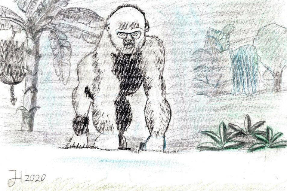 """Justus Heinrich hat mit Bleistift und Buntstift auf Strukturpapier einen """"Silberrücken"""" gezeichnet. Dieses Bild wurde durch den Besuch des Pongolandes im Leipziger Zoo inspiriert. Der alte Gorilla schaut gespannt und wohl auch etwas wütend zu seinen Beoba"""