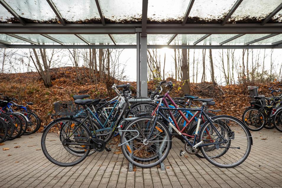 Überdachte Fahrradparkplätze am Bahnhof Pirna: Täglich zu 70 bis 80 Prozent ausgelastet.