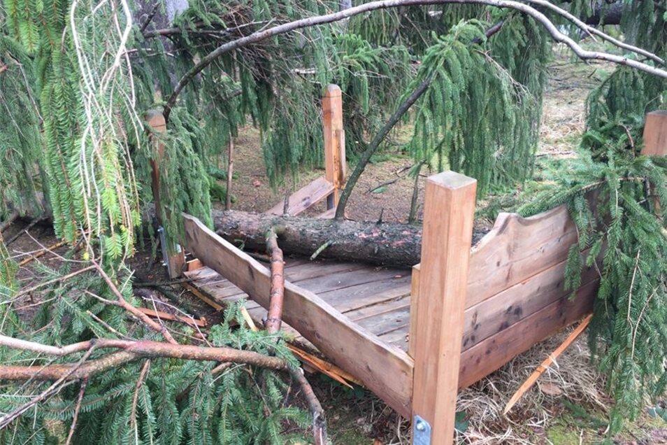 Das Bett auf dem Sinnespfad im Tharandter Wald wurde von umfallenden Bäumen beschädigt. Der ganze Bereich um das Walderlebniszentrum Grillenburg bleibt wegen Sturmschäden gesperrt.