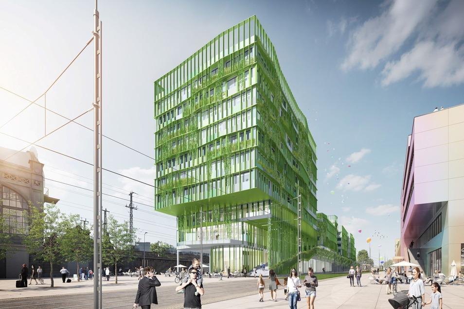Pflanzen wachsen auf der Fassade von Dresdens neuem Fernbusterminal. Im kommenden Sommer sollen die Bauarbeiten beginnen.