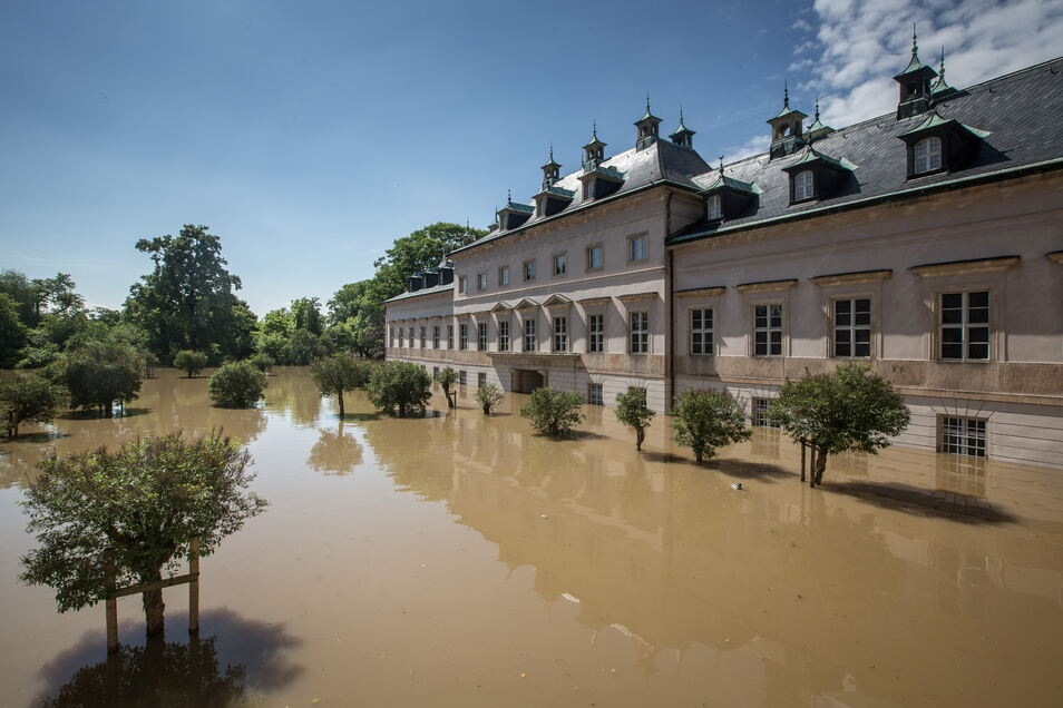 Flutkatastrophen wie hier am Schloss Pillnitz werden wohl zunehmen. Was kann die Kunst leisten, um die Natur zu erhalten? Die Dresdner Nacht der Künste widmet sich dem Auftrag der Kunst an die Umwelt.