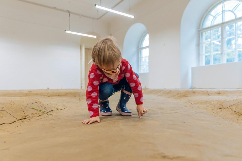 Giuseppe Licari hat zwölf Tonnen Lehm als Fußboden ins Museum gebracht. In den Rissen wachsen Pflanzen, die Trockenheit und Kälte aushalten. Der Italiener will aber auch testen, wie viel Natur ein Museum ertragen kann.