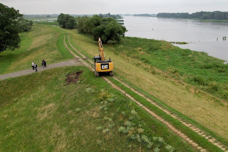Blick auf einen Deich an der Elbe, der die Umgebung vor Überflutungen schützen soll.