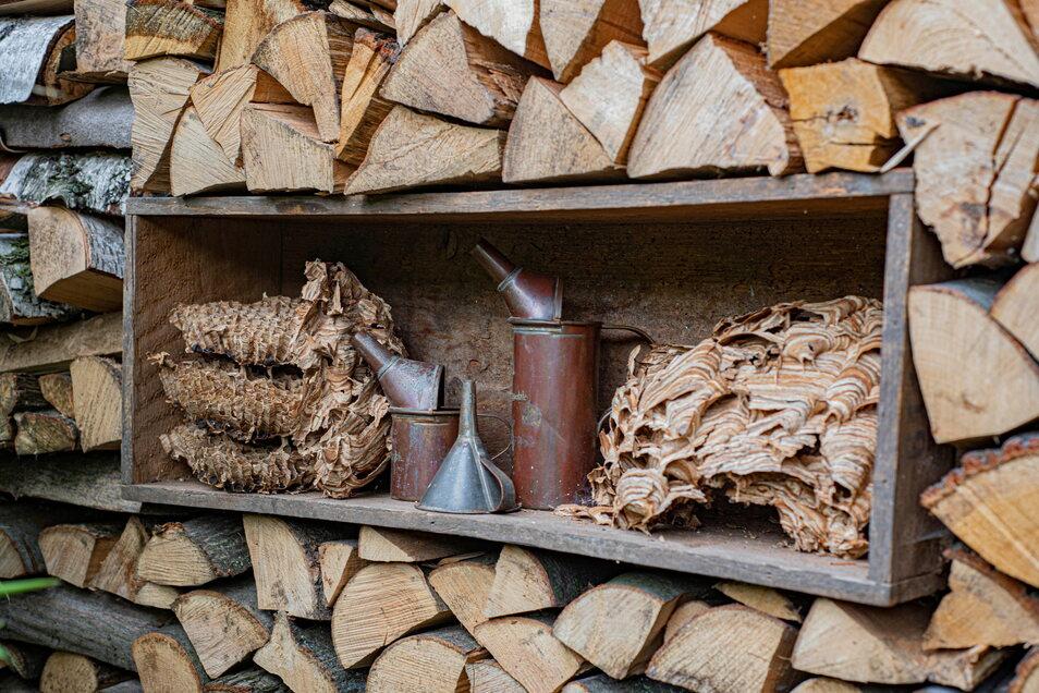 Selbst der Brennholzstapel wurde zum Deko-Objekt umgebaut. Hier fand ein altes Hornissennest aus dem Fachwerkhaus seinen Platz.