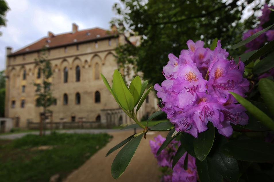 Das Seifersdorfer Schloss war ein Geschenk August des Starken an Heinrich von Brühl und eines der ersten neogotischen Bauwerke in Sachsen.