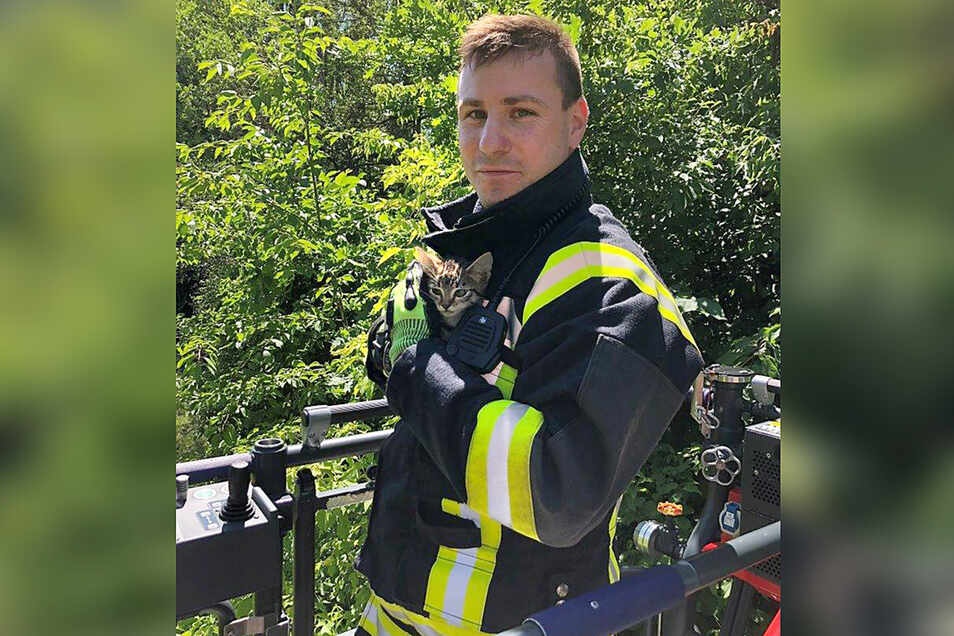 Feuerwehrmann Stephan Friedrich hat das gerettete Kätzchen im Arm.